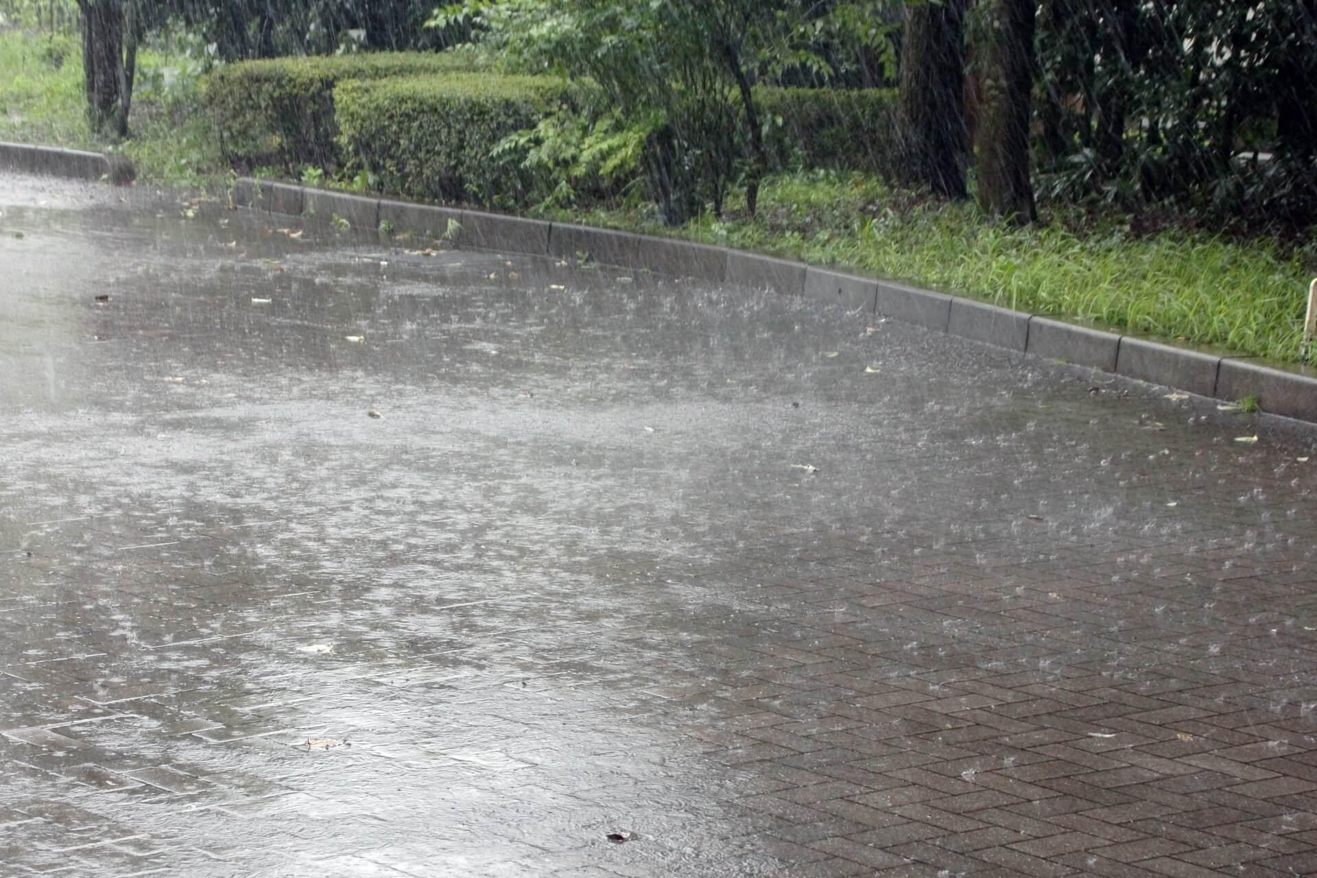 進む環境汚染:酸性雨で本当に頭がハゲるのか?