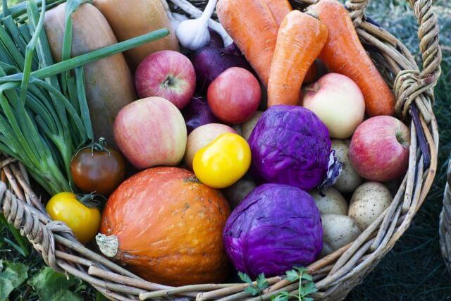 生産者から直接新鮮食材が届く!圧倒的鮮度の食材なら食べチョク!